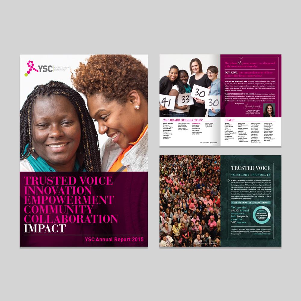 YSC 2015 annual report