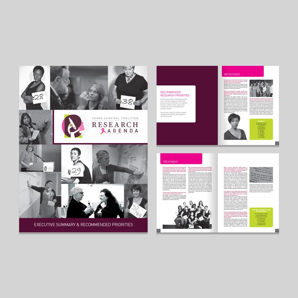 YSC Research Agenda